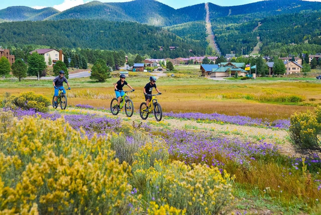 Mountain bikers on floral trails