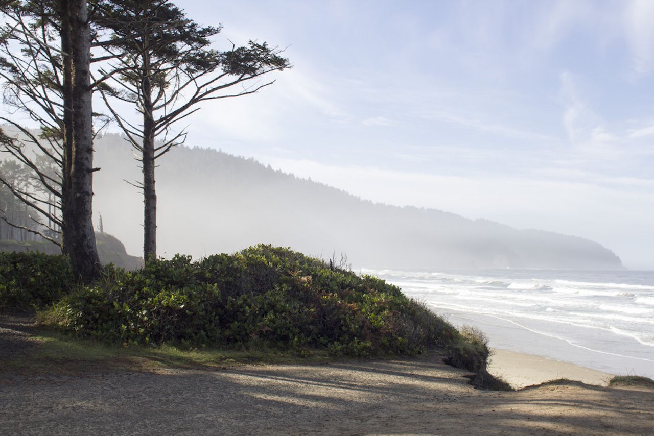 Cape Lookout State Park on the Oregon coast