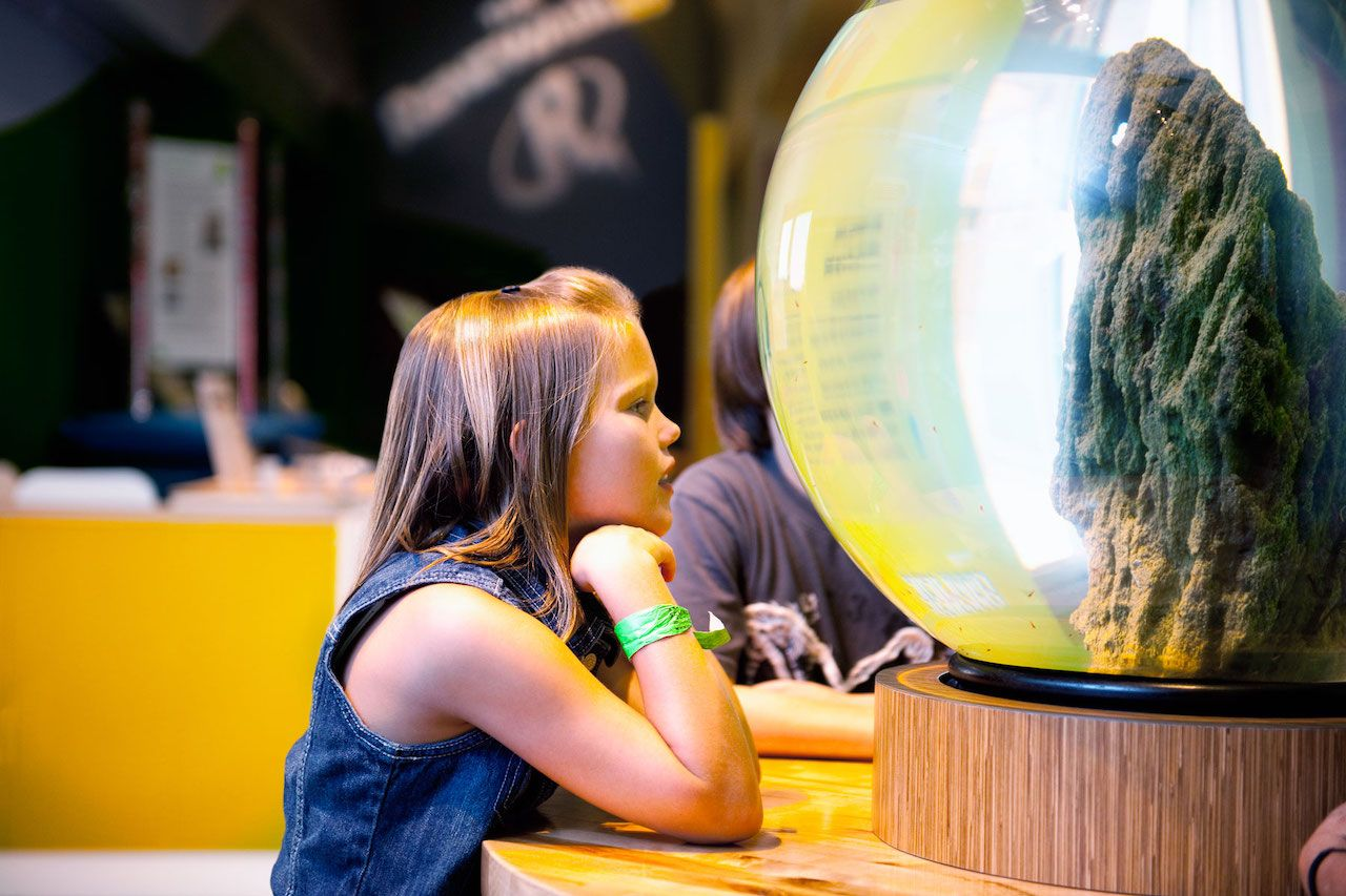 Child at Arizona Science Center