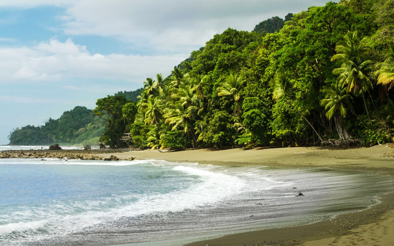 Corcovado National Park, Costa Rica, curving beach with palm trees and jungle