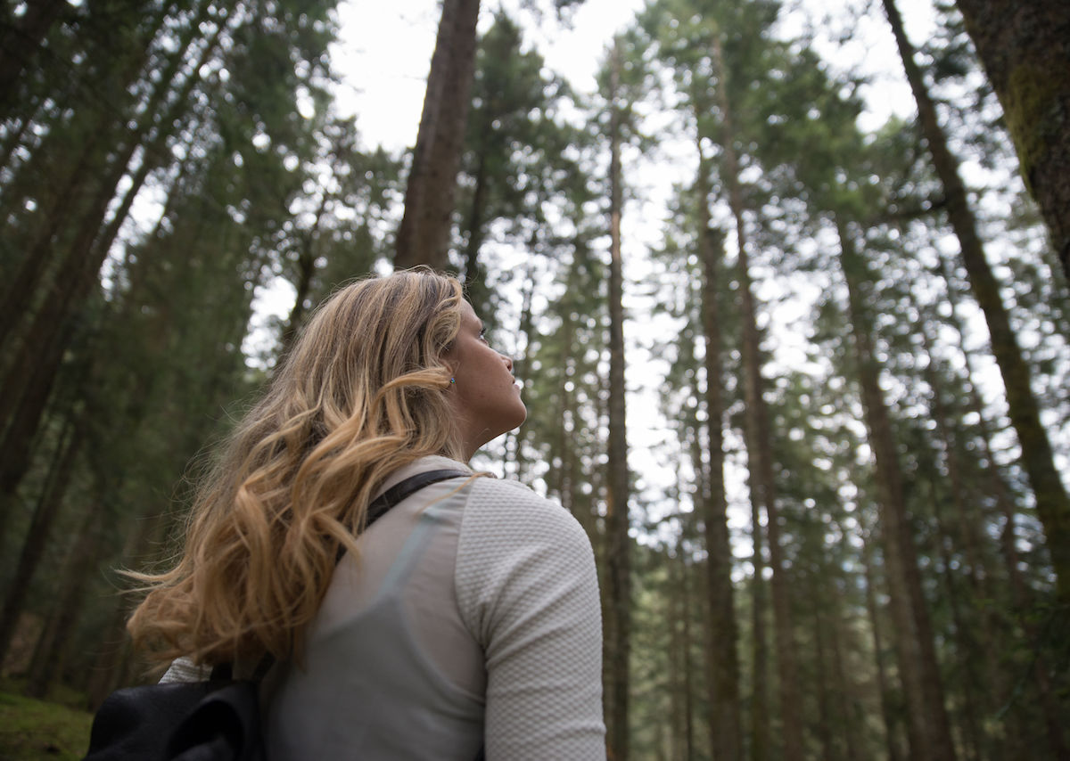The best places in America to try forest bathing