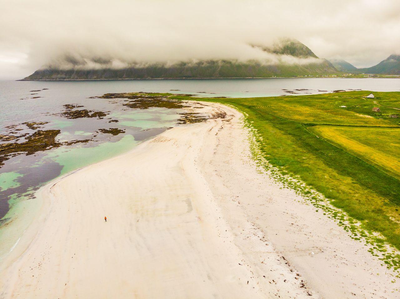 Grass, coast, and Beach Skagsanden in Norway