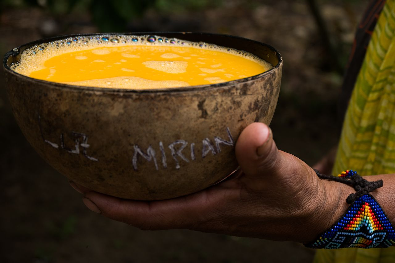 Indigenous traditional beverage called shisha made of an amazon fruit