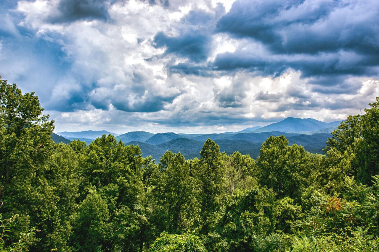 Looking east from Newfound Gap, Tennessee