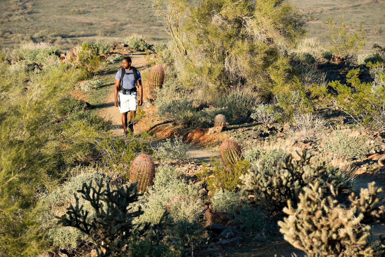 Person hiking outdoors on a trail at Phoenix Sonoran Preserve in Phoenix, Arizona