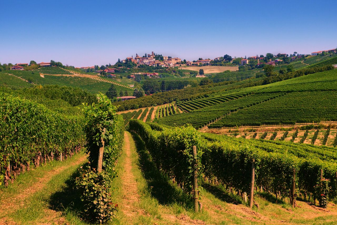 Rolling Hill Vineyards with the Town of Neive in Background, Piedmont, Italy