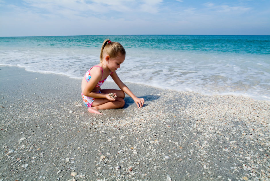 Shelling Fort Myers and Sanibel