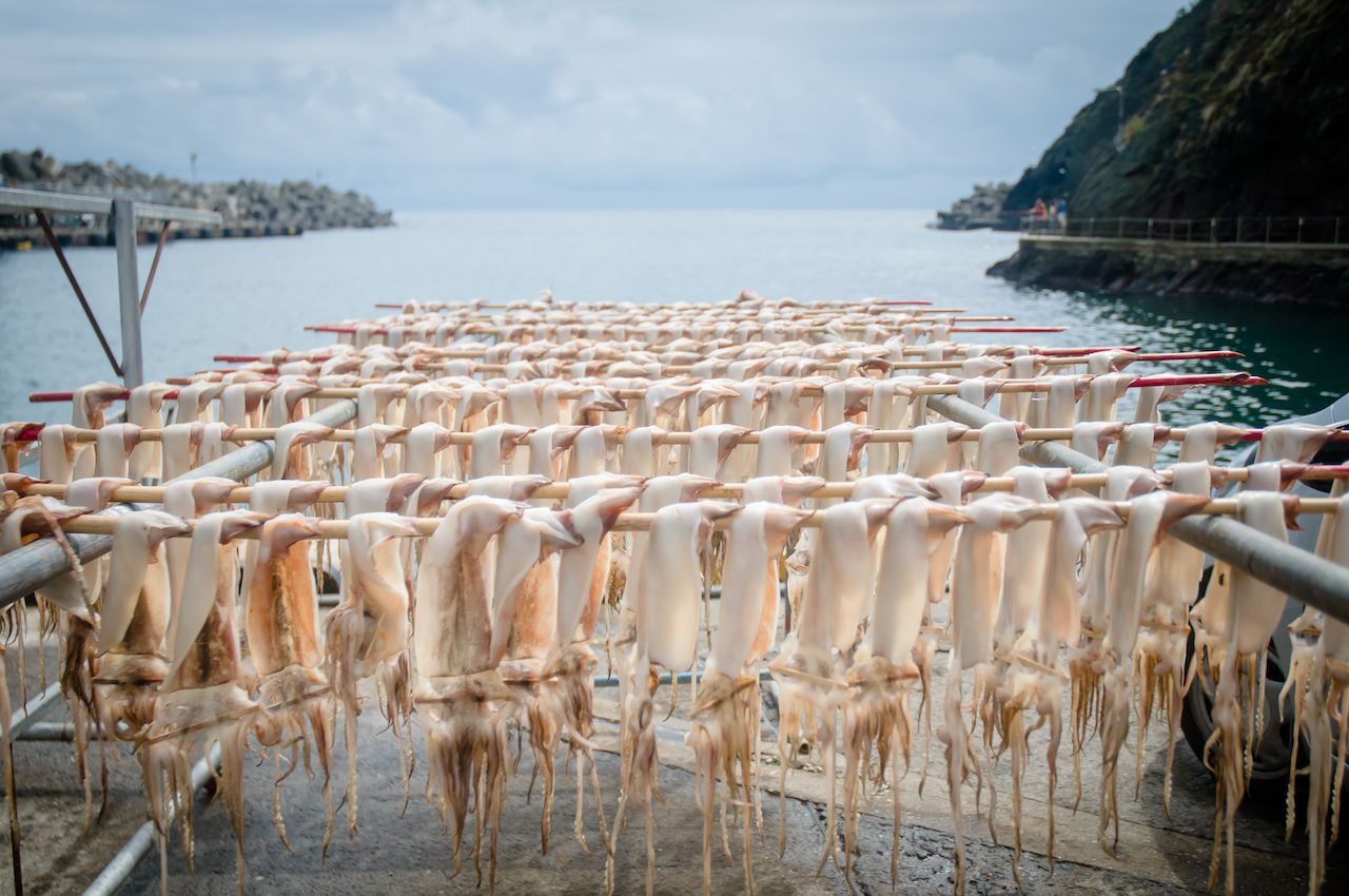 Squid in Ulleungdo Island