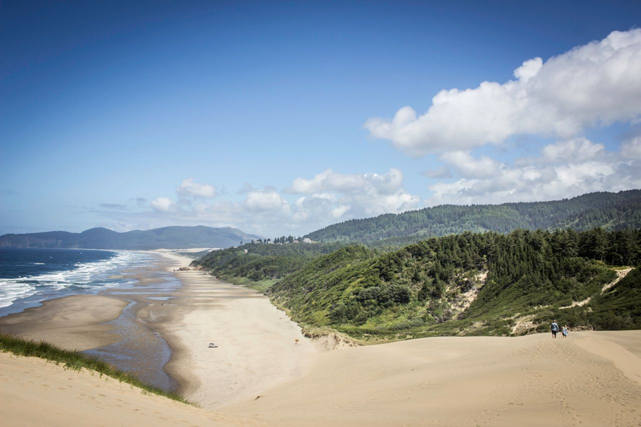 The Oregon coastline on a beautiful summer day from on top of a sand dune in Pacific City, Oregon