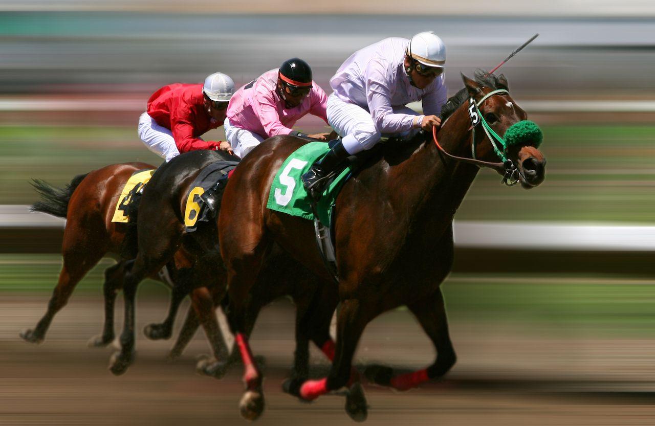 Three racehorses speeding around a track