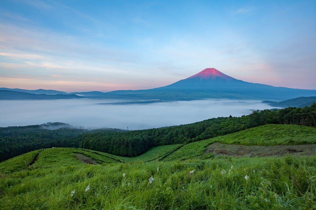 View of Mount Fuji