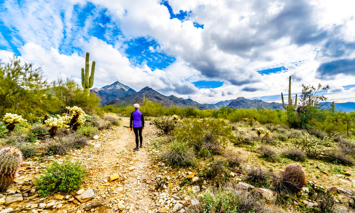 This stunning Scottsdale desert has the most rewarding hikes for every ability