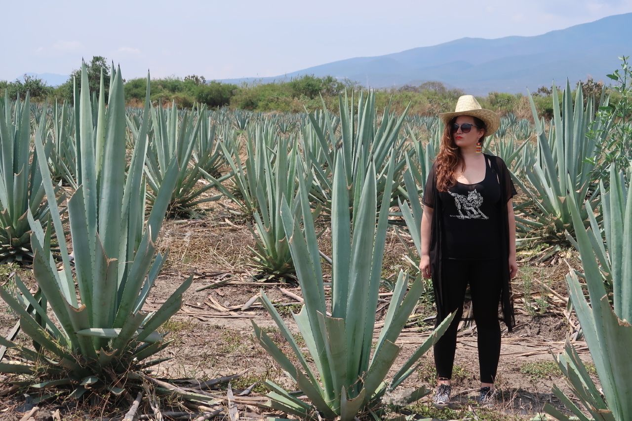 Woman standing with mezcal cacti