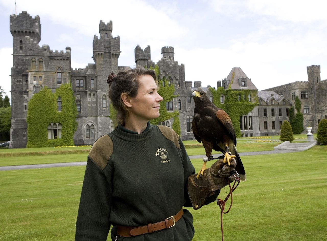 Falconry at Ashford Castle in Ireland