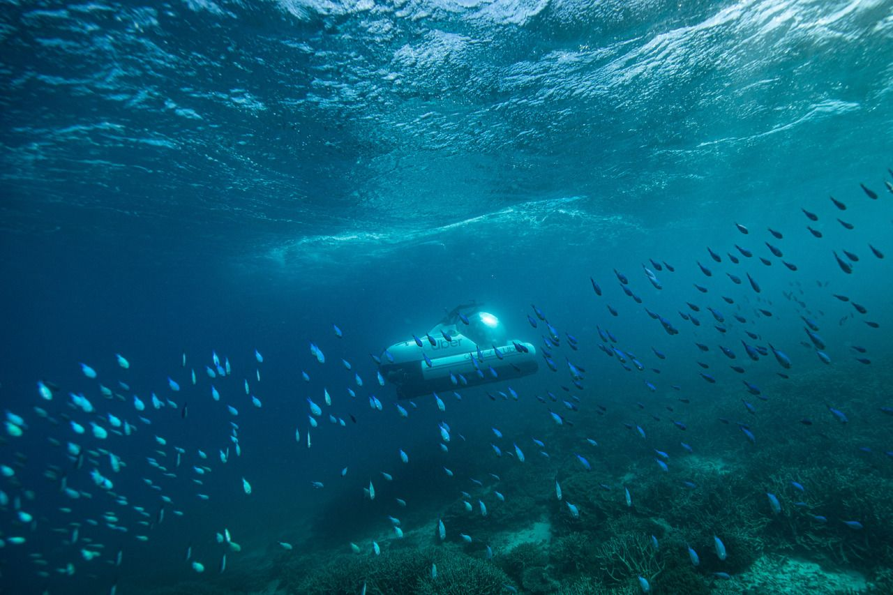 scUber submarine with marine life in Australia