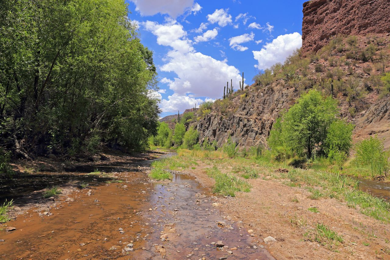 Aravaipa Creek flows through a protected canyon under partly cloudy skies