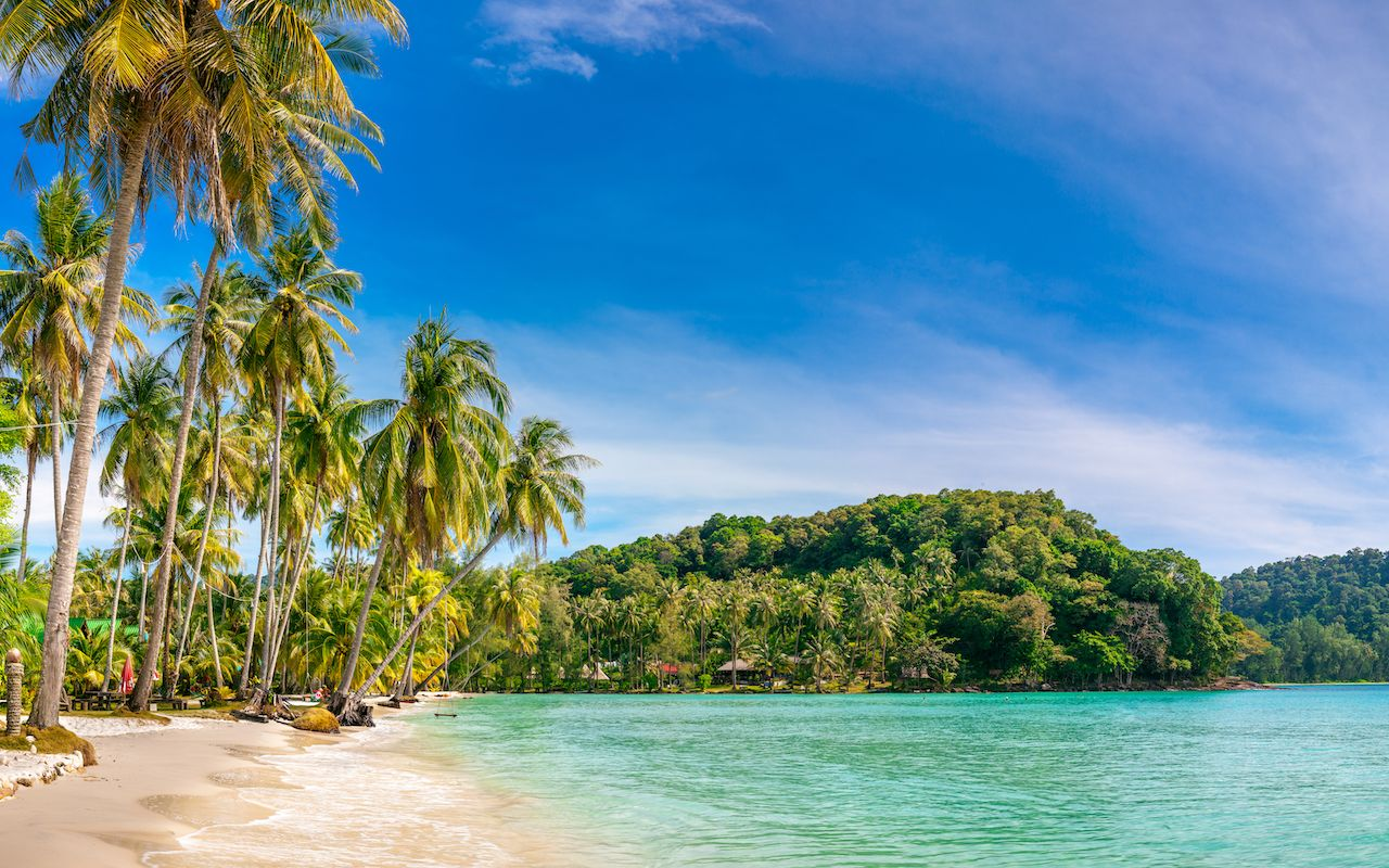 View of nice tropical sandy beach with green coconut palms trees around