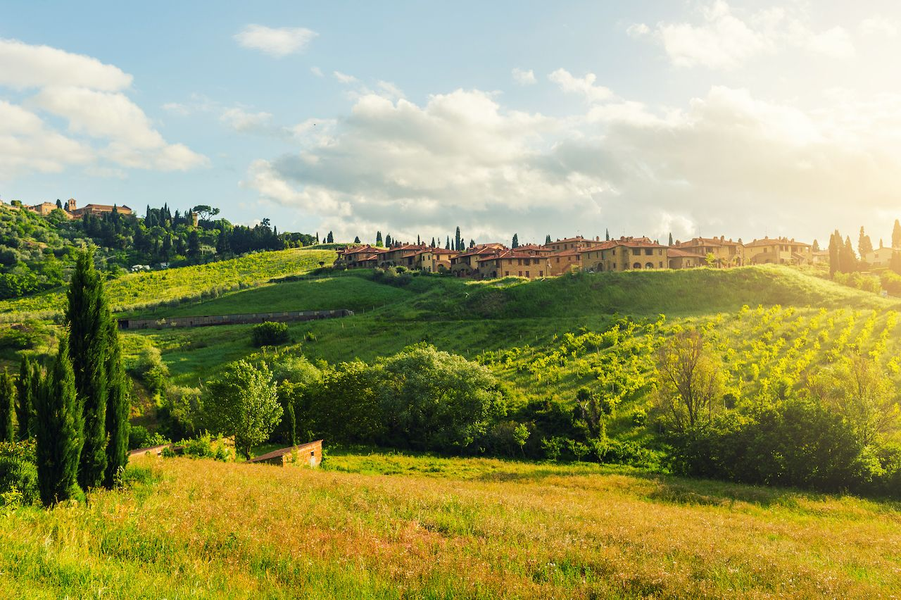 morning Landscape and green field and meadow landmark of Tuscany near pienza italy