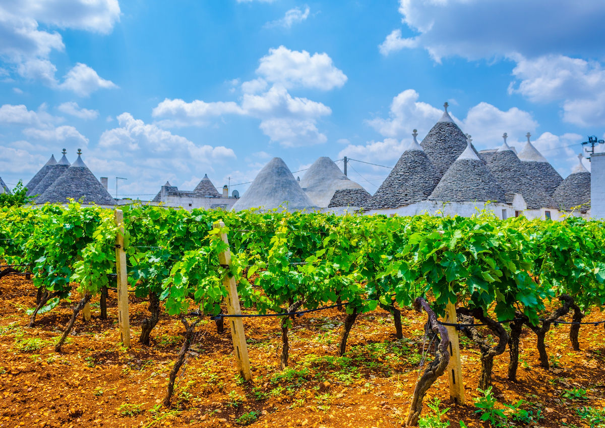 Italy's lesser-known wines to try from Puglia, Sicily, and