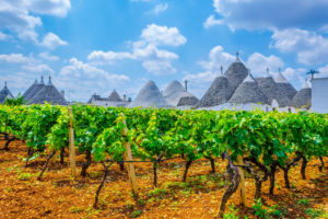 The 8 best wine towns in Italy - Matador Network