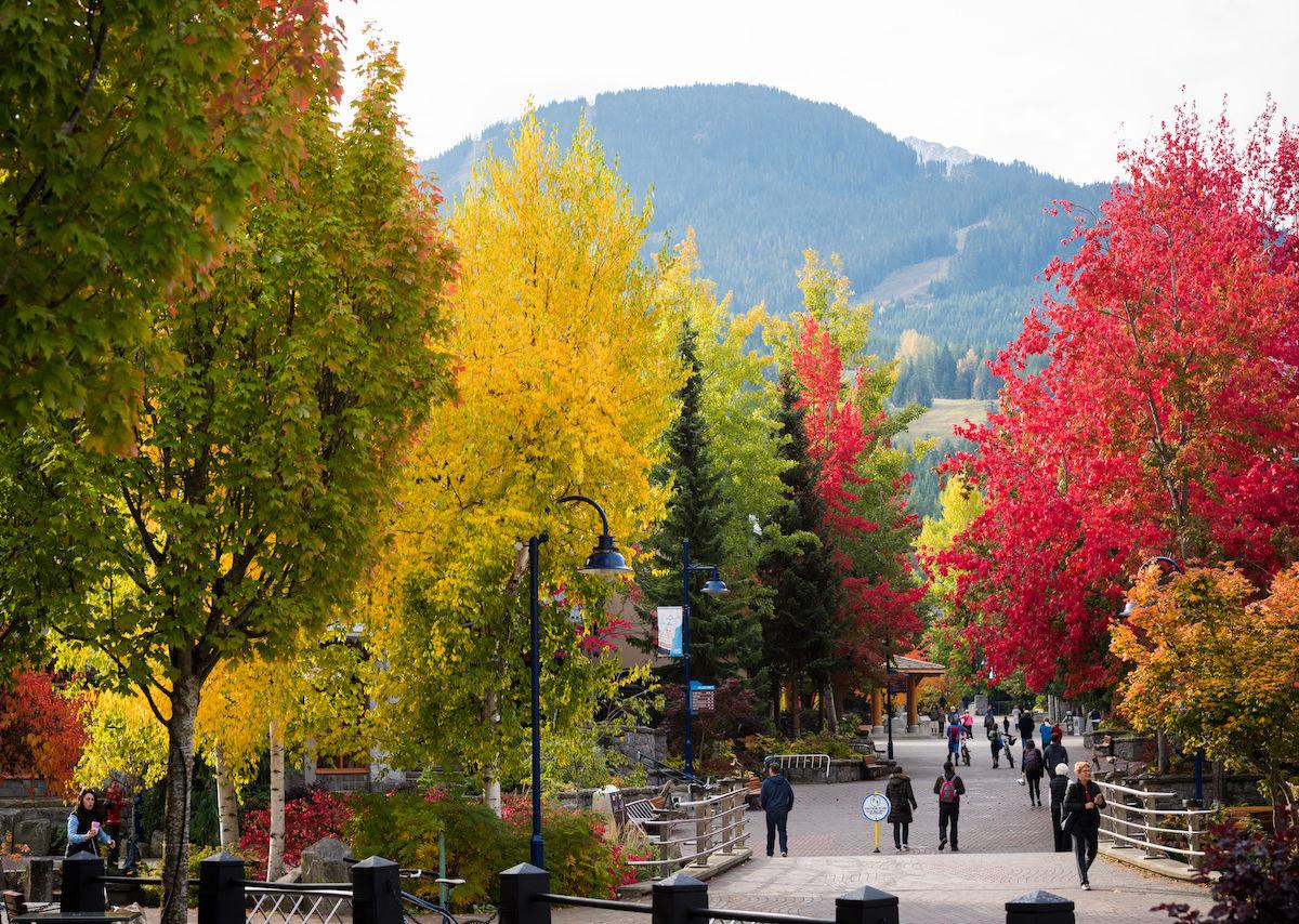 Why the fall season is Whistler's best-kept secret