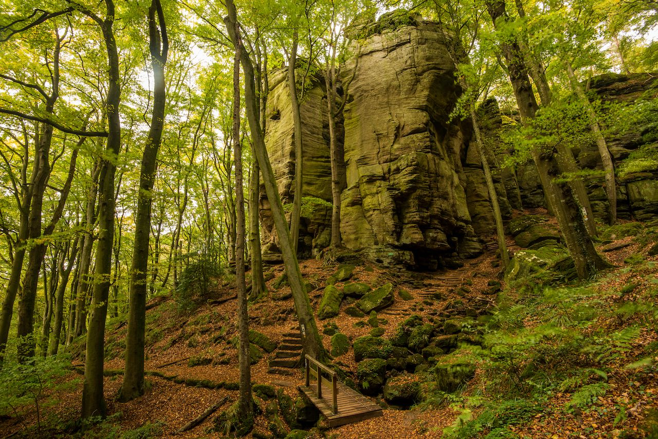 Hiking Trail in the Mullerthal forests, Luxembourg