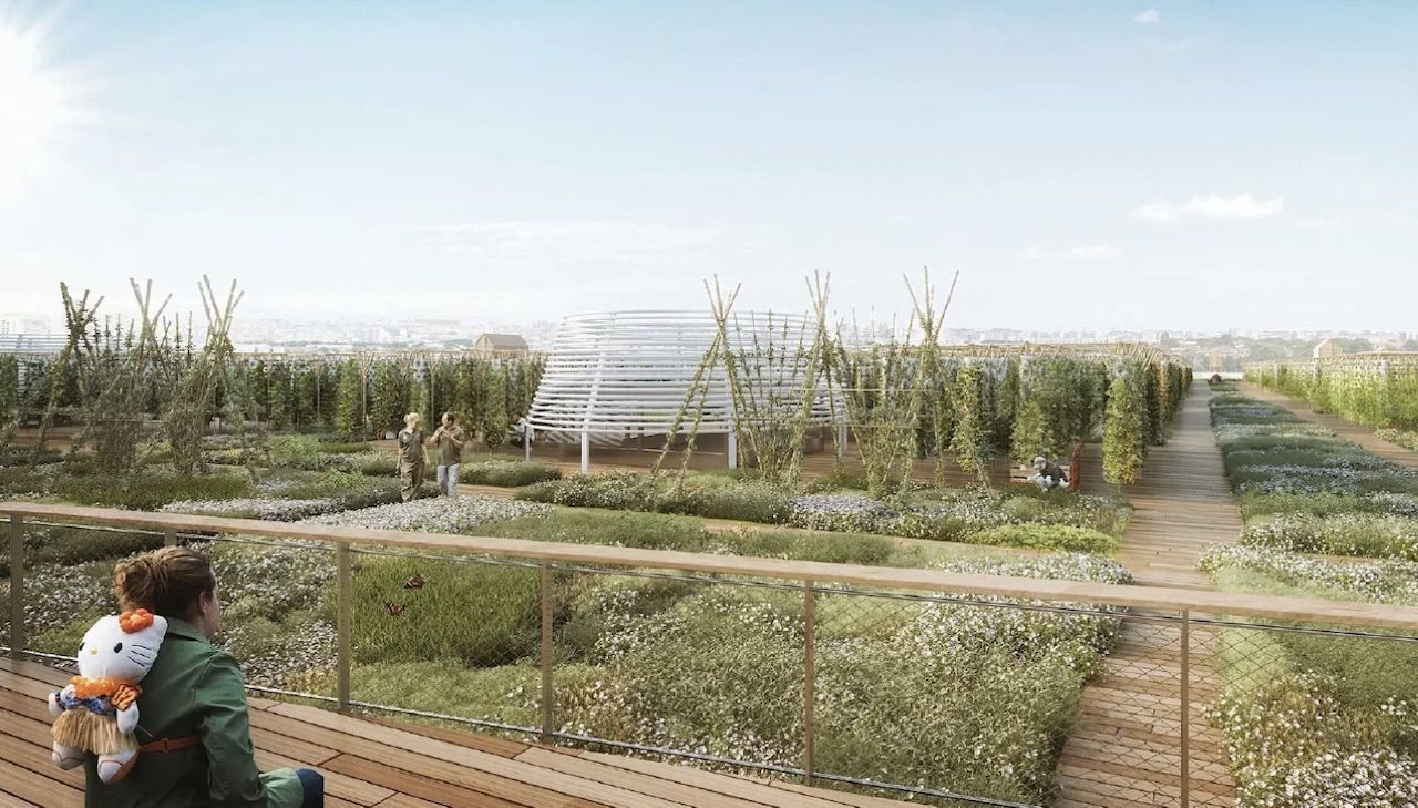 Urban farm in Paris on rooftop