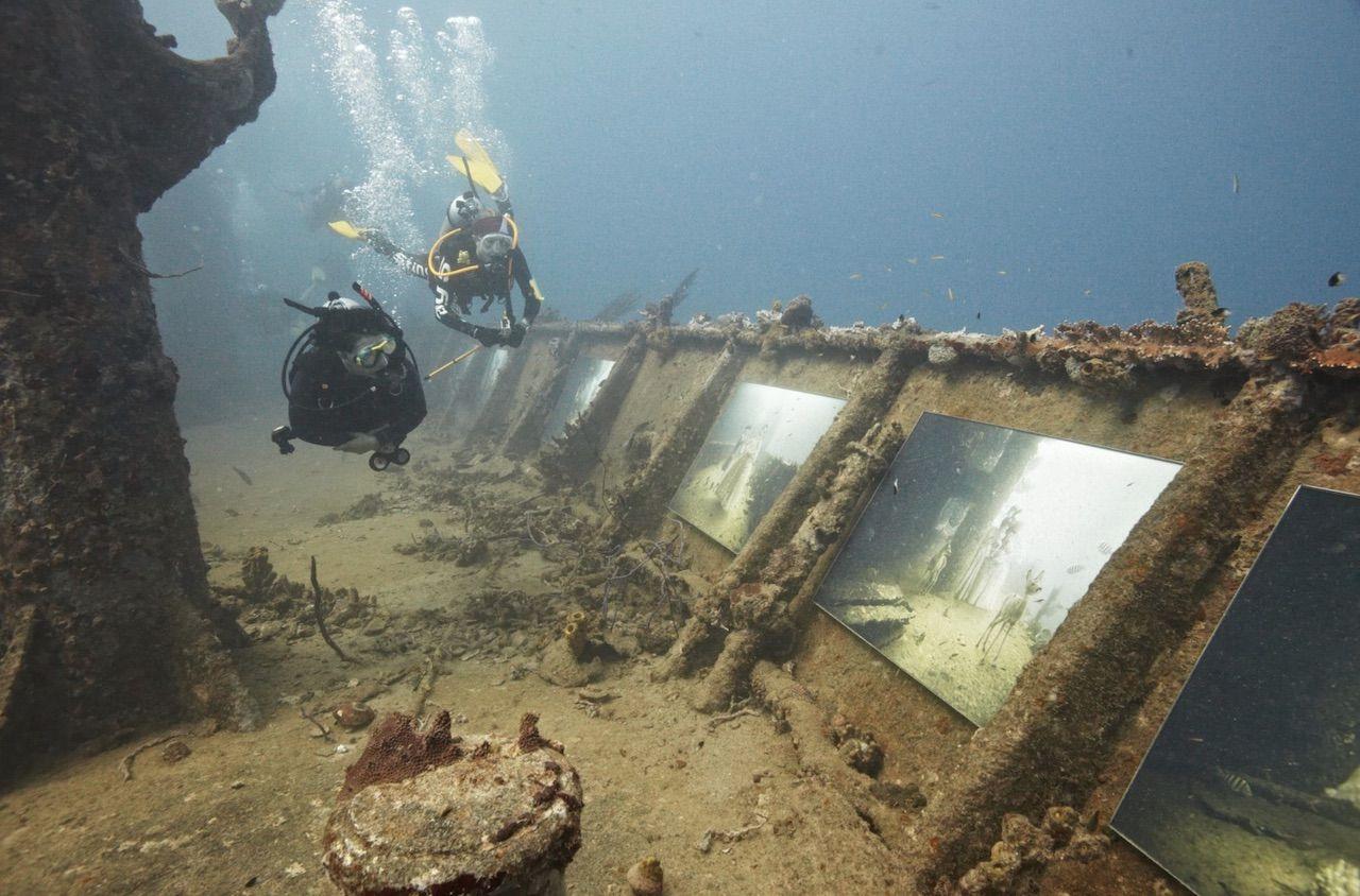imagen plastic ocean project