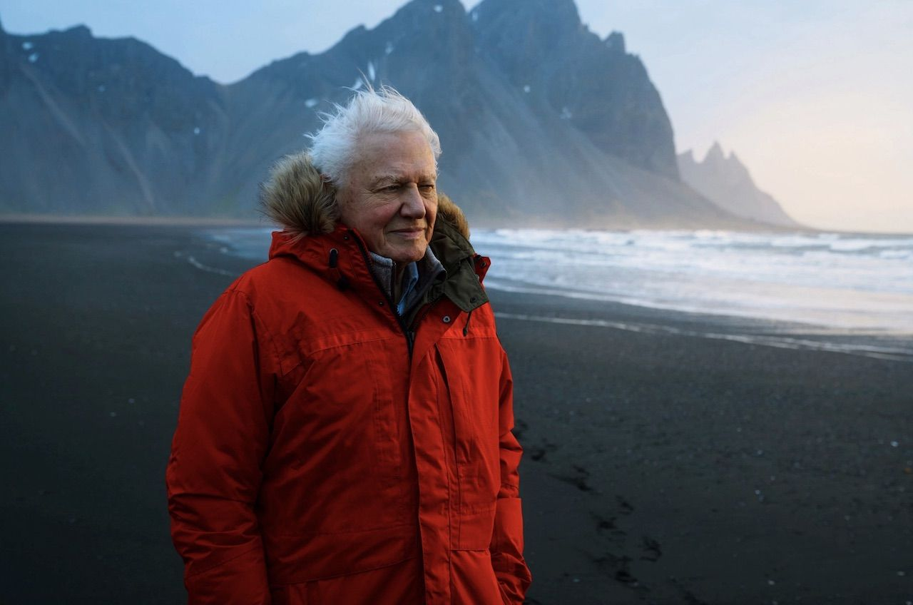 David Attenborough new BBC show