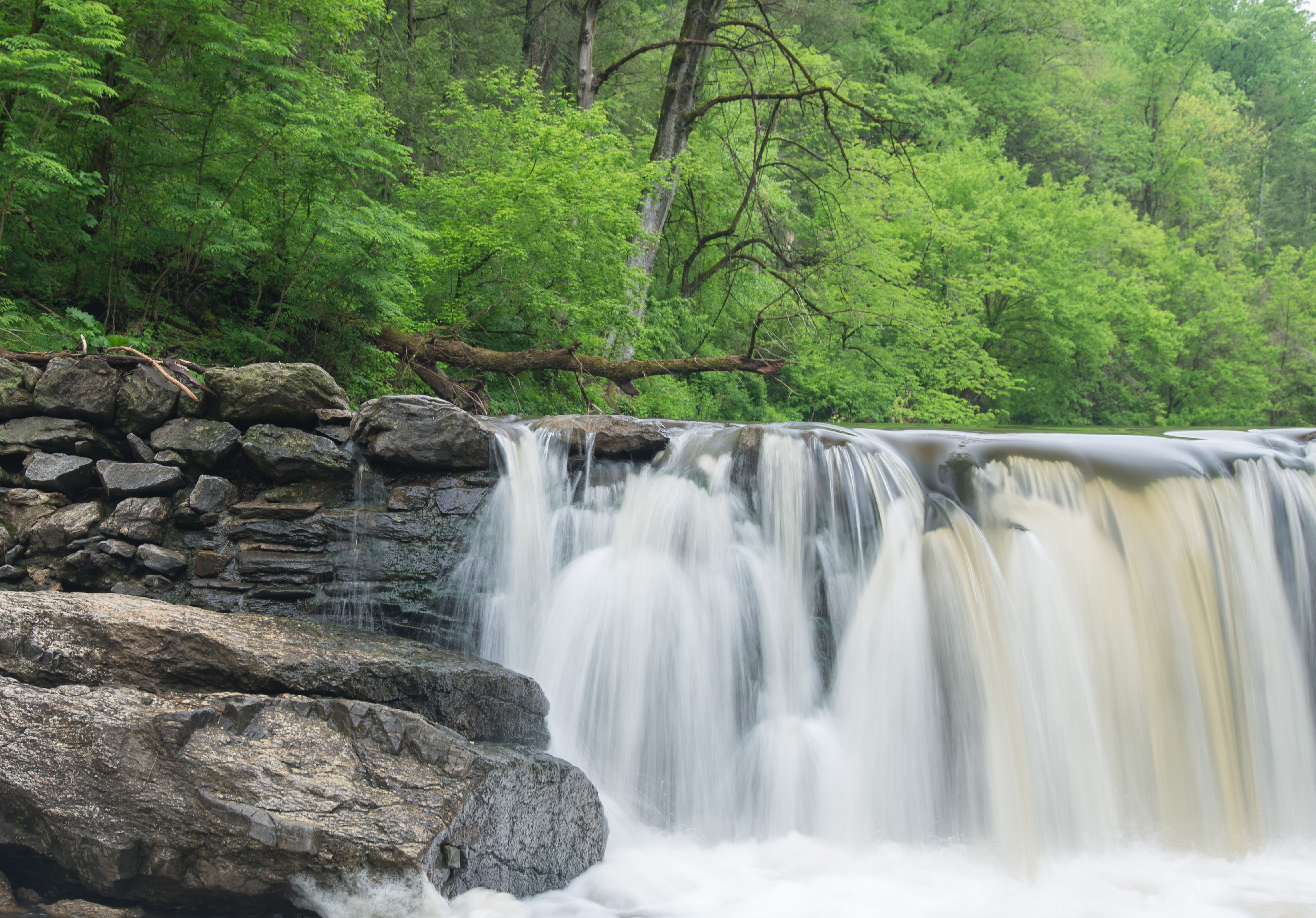 Forest waterfall on old Magarge Dam, Green Valley, Wissahickon, Philadelphia