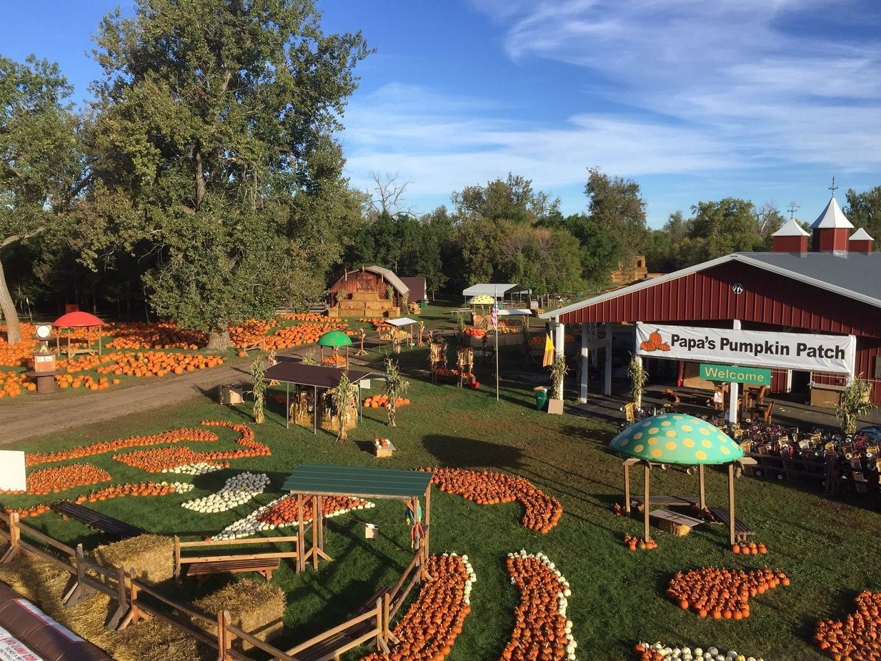 Best pumpkin patches in the US