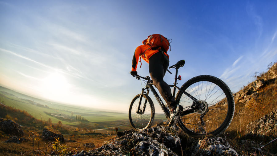 Everything you need for a successful mountain bike trip