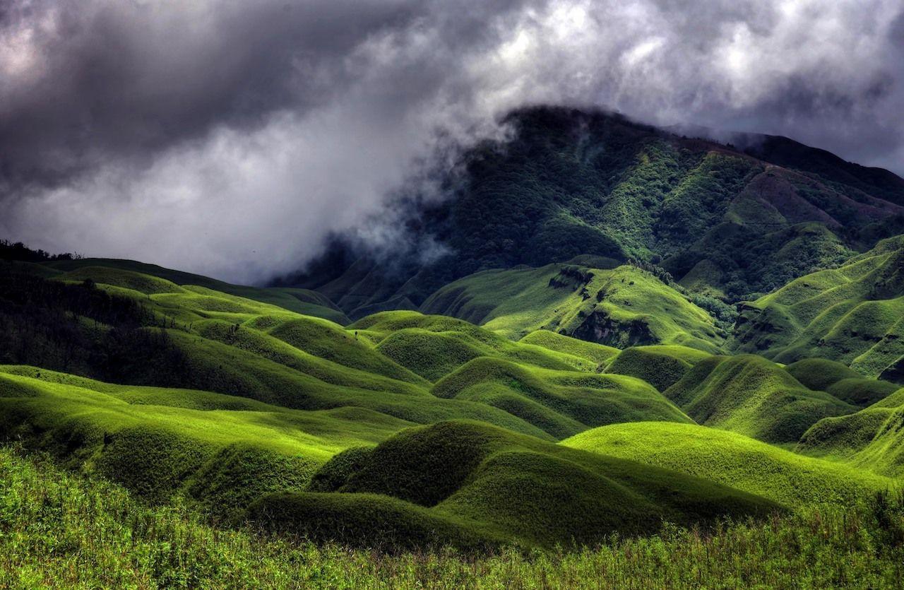 Dzukou Valley, Nagaland, Northeast India