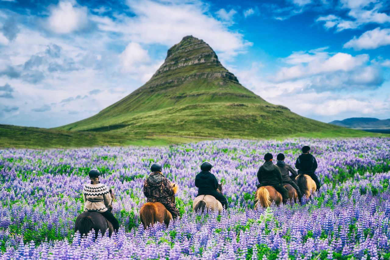 Tourist ride horse at Kirkjufell mountain