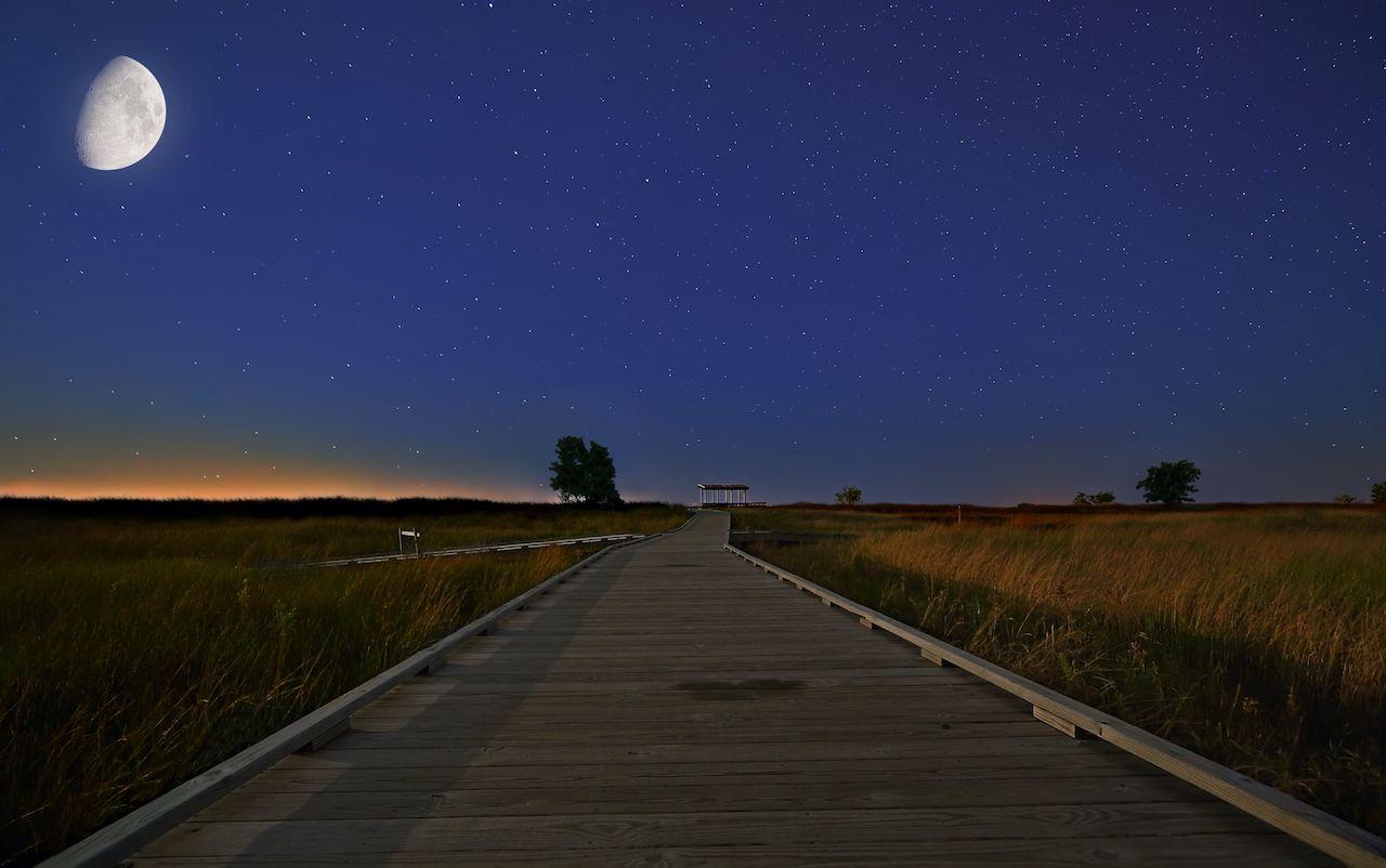 wooden walkway through the grassland at Headlands Beach State Park, Ohio