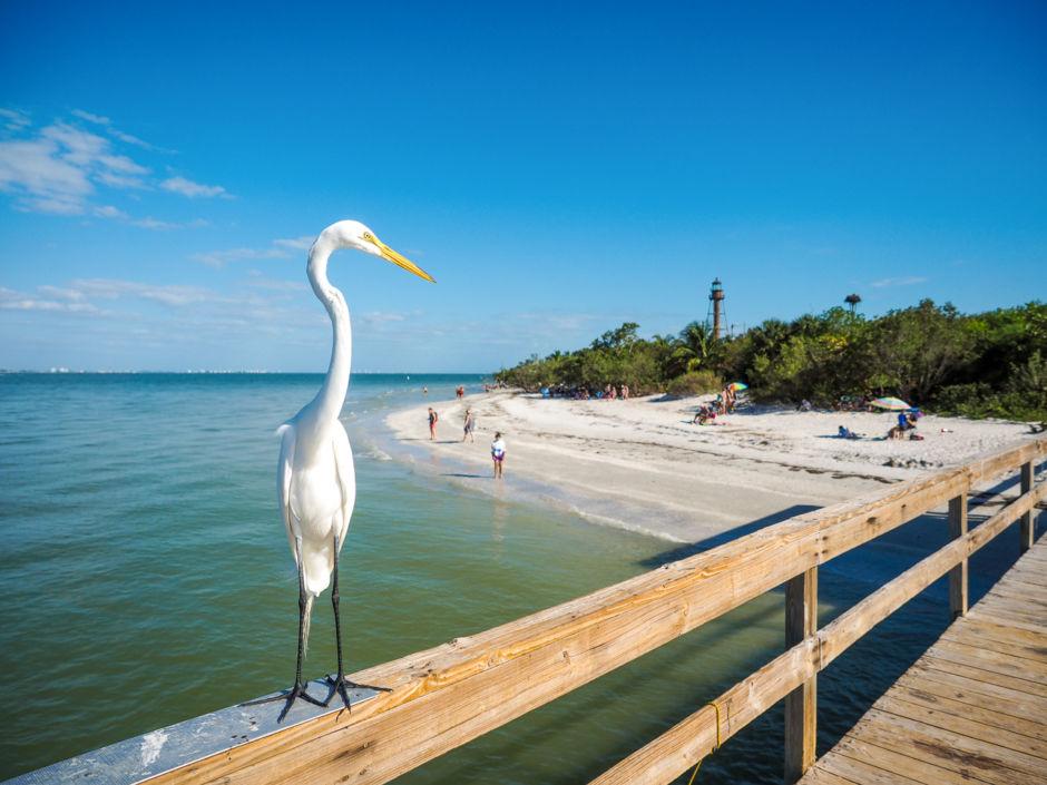 Guida per viaggiare nelle 8 migliori spiagge della Florida sud occidentale