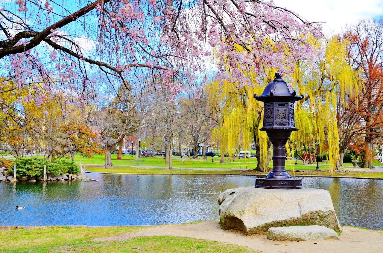 Lagoon, Boston
