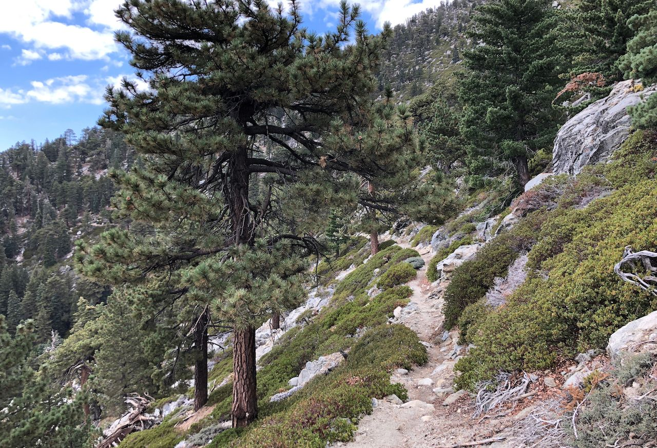 San Jacinto Mountains, California