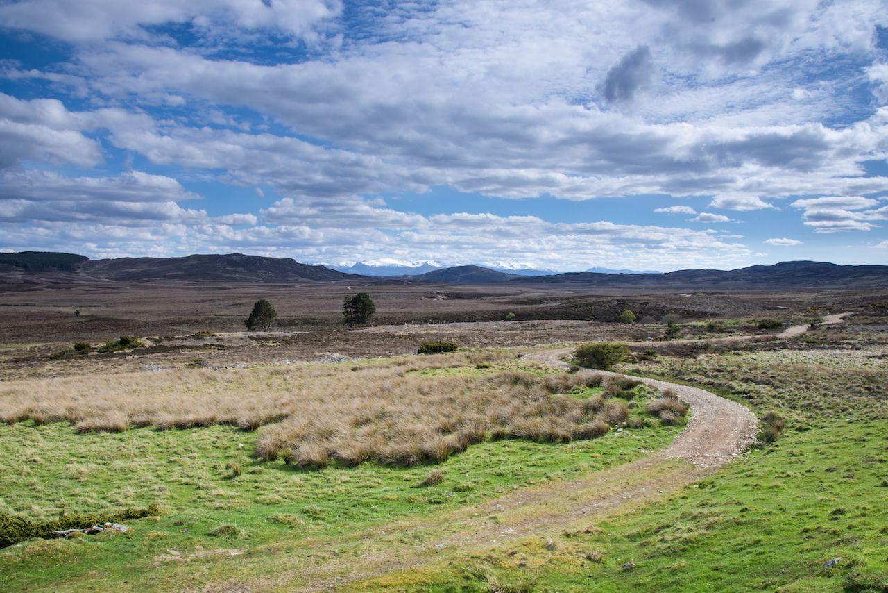 Track across Dava Moor
