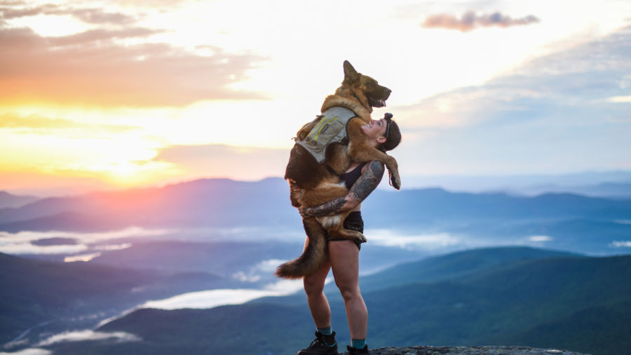 How to go backpacking with a dog, according to an expert