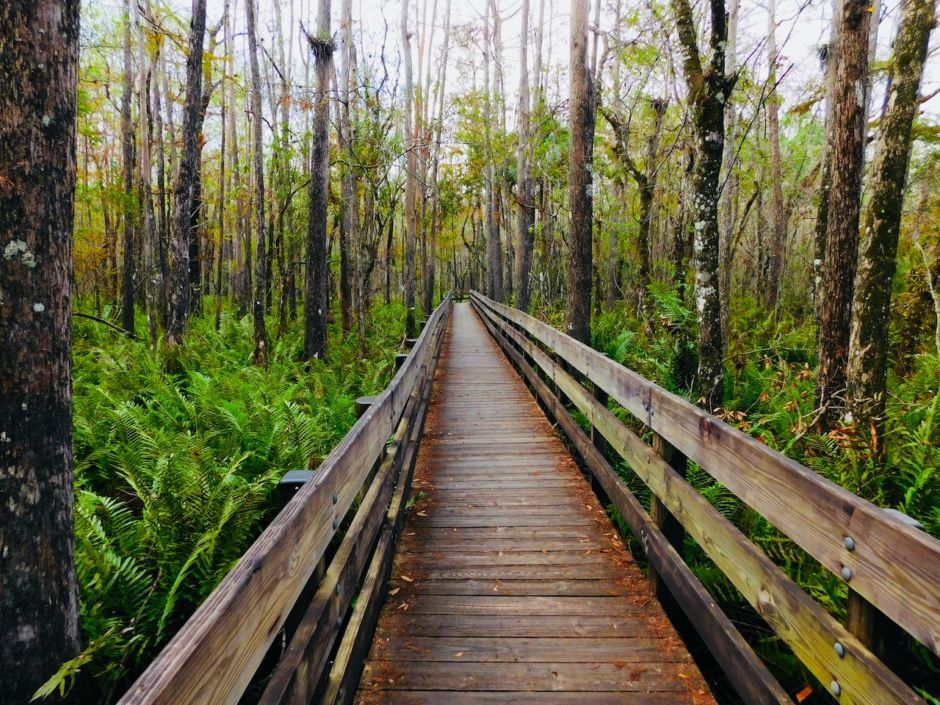Urban escape: 5 US cities where you can find nature without leaving town