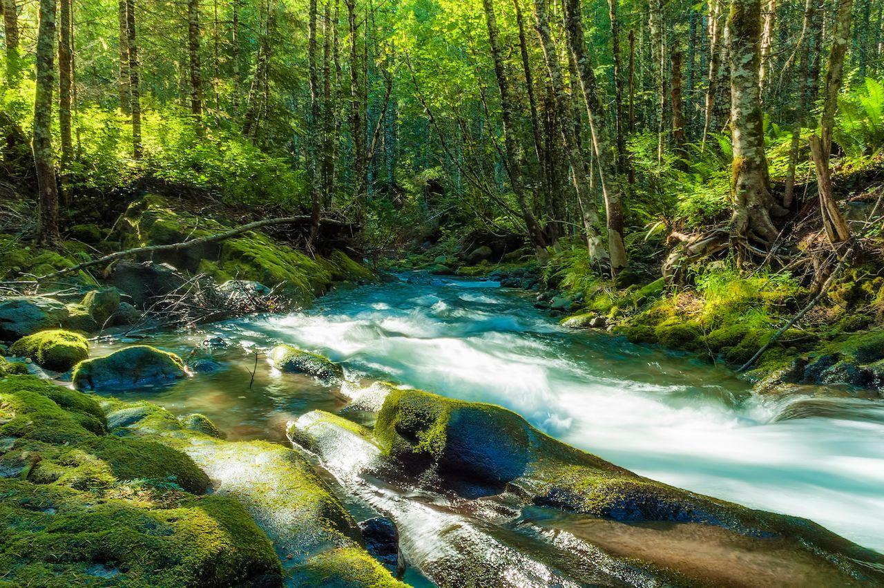 Near the head of the Kalama River