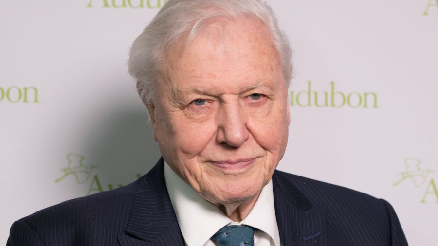 David Attenborough says our planet faces 'disaster' in trailer for new documentary