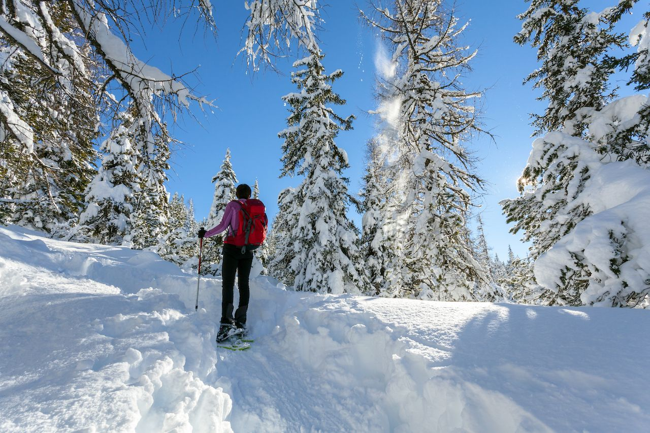 hike in the woods with snowshoes