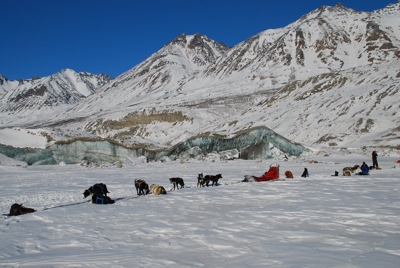 Earthsong Lodge and Denali Dog Sled Expeditions