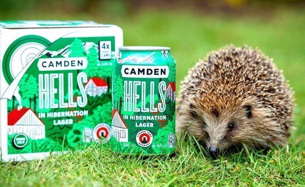 Hedgehog next to beer