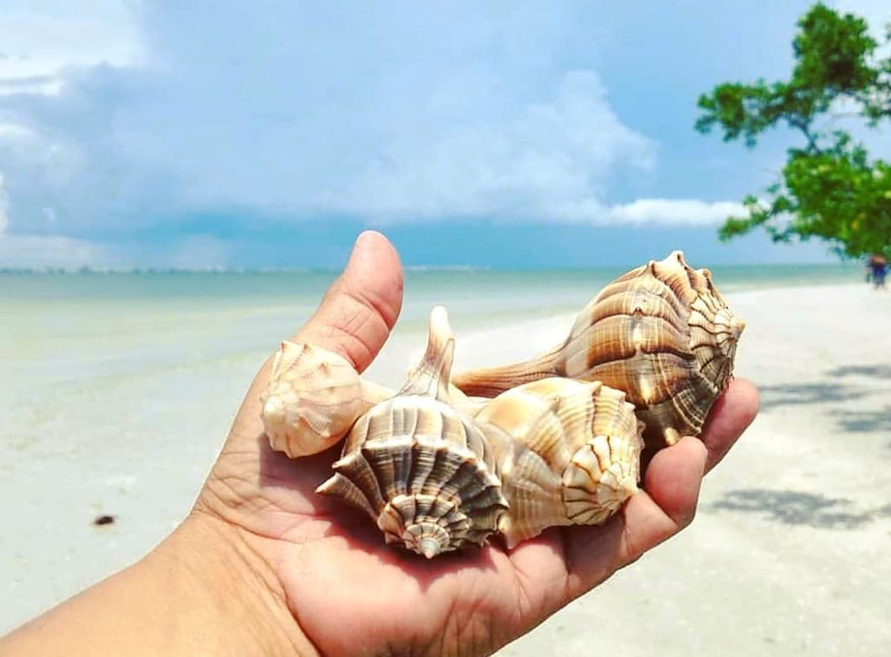 Neighborhood travel guide: The Beaches of Fort Myers & Sanibel