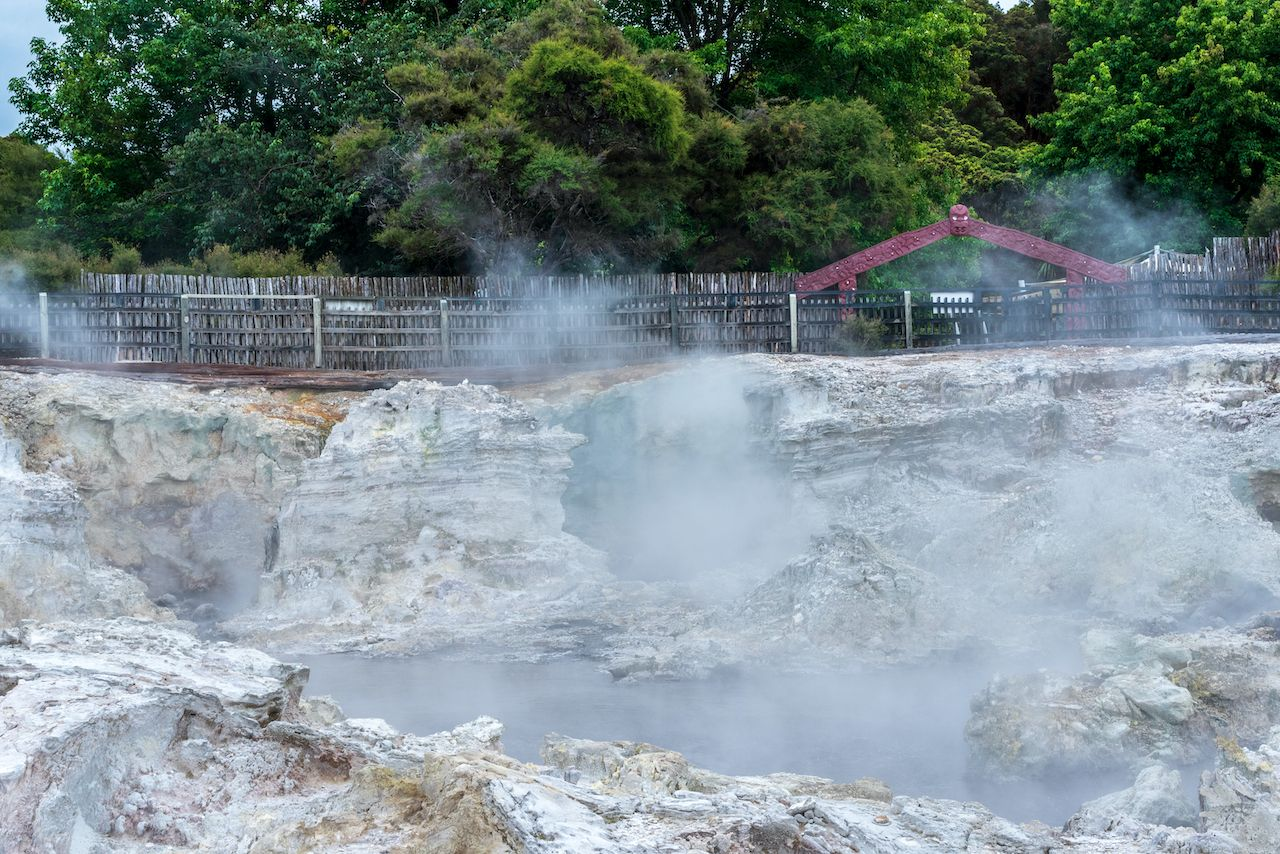 Steam rising from boiling hot geothermal pools at Hell's Gate in New Zealand