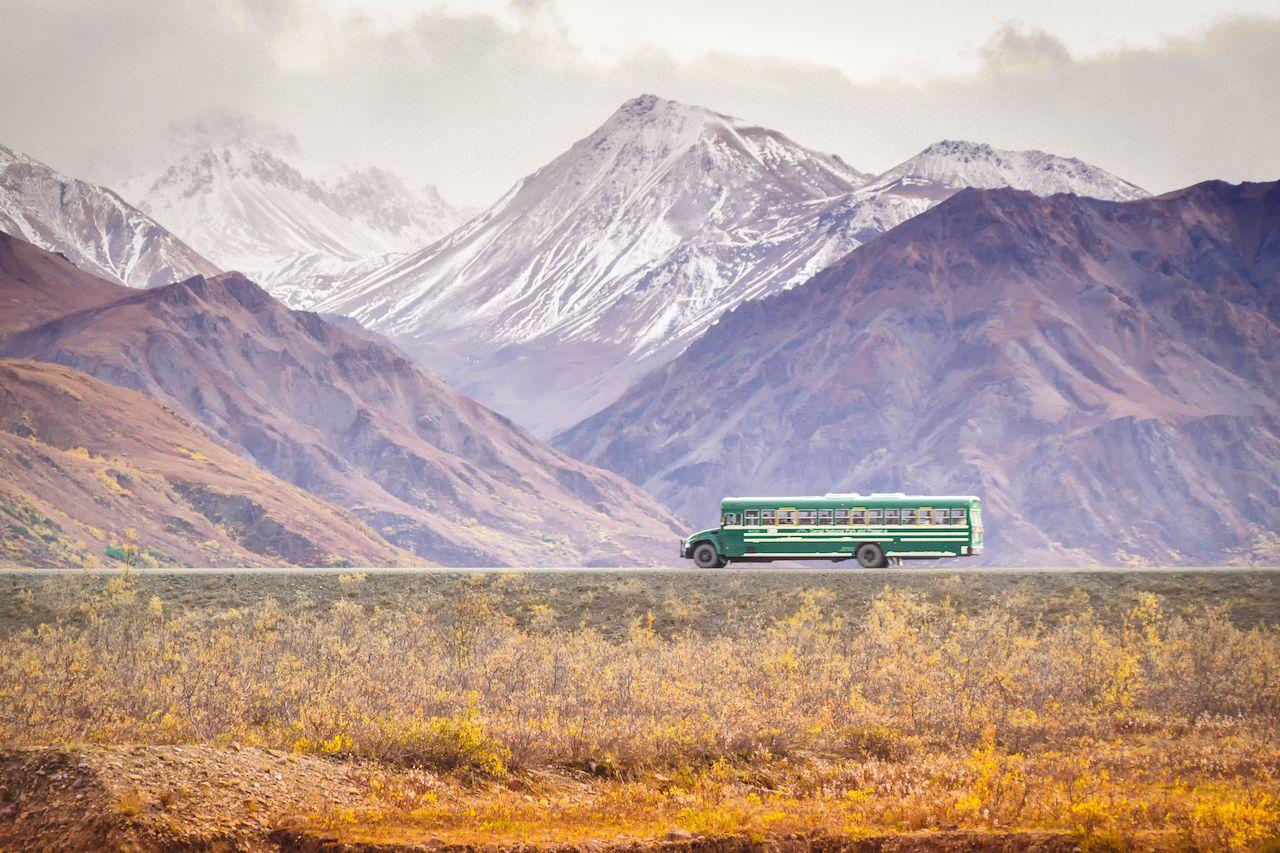 Bus tour of Denali National Park