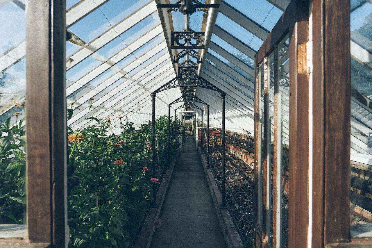 history-kitchen-garden-chatsworth-house